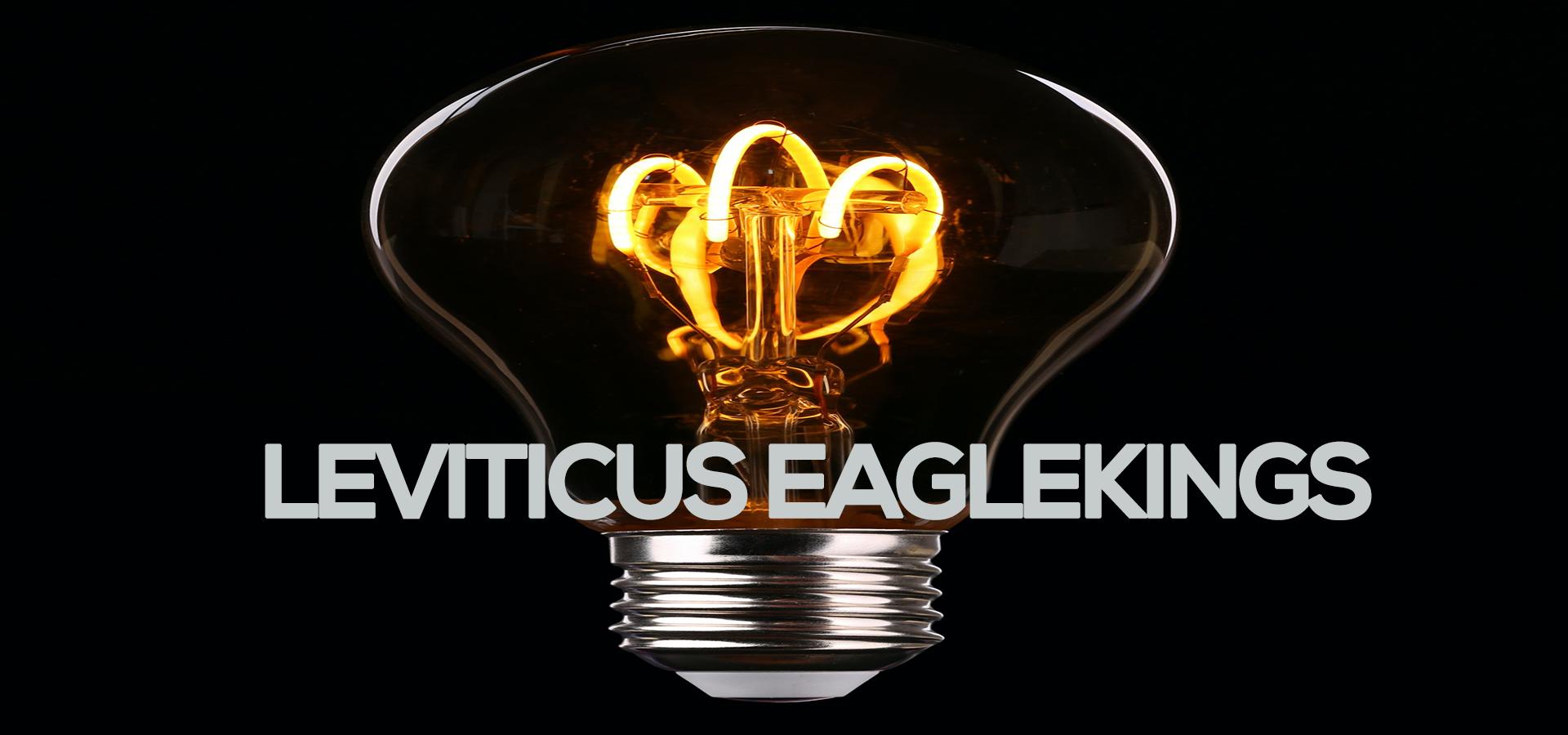 leviticus eaglekings